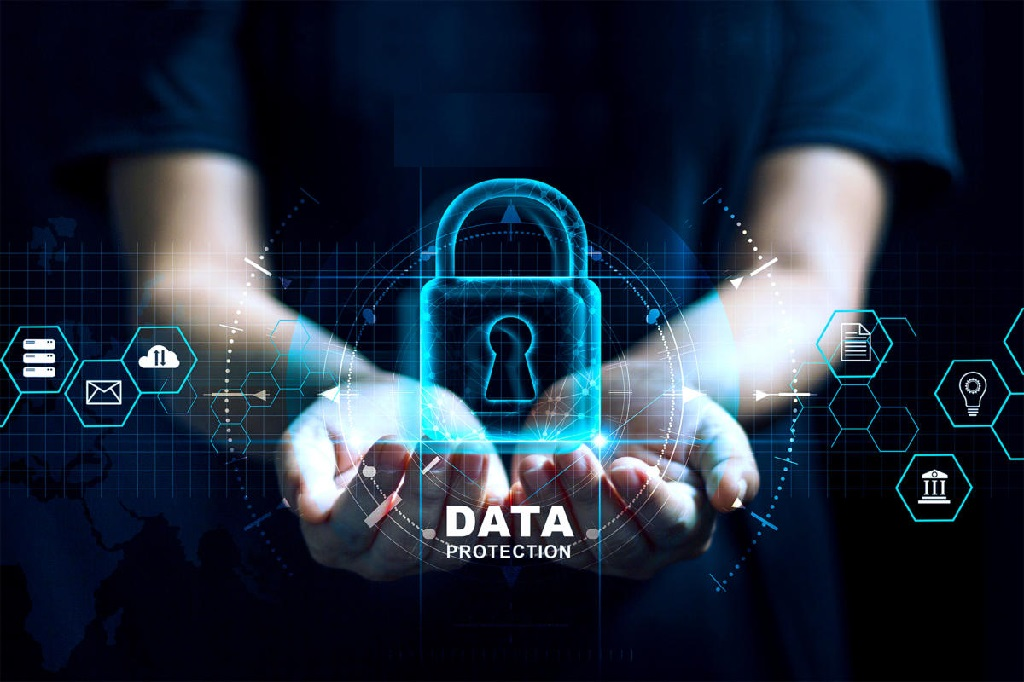 How Companies Manage Data Security