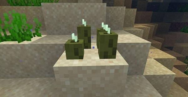 Minecraft pickle